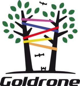 logo-goldrone